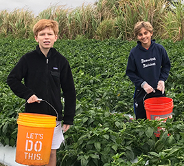 Rosarian Academy Community Gleans 4,000 Pounds of Peppers to Help Feed the Hungry