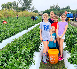 Rosarian Academy Community Gleans Bell Peppers to Serve Food Insecure Neighbors